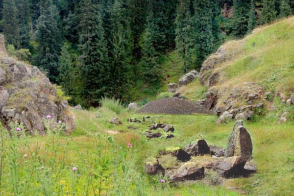курганы леса Бартогай
