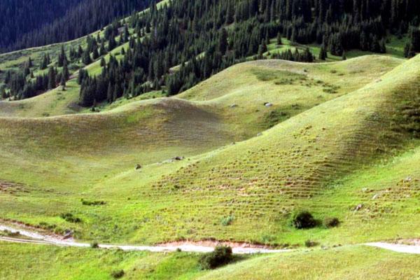 Бартогай – мистический оазис в степях Казахстана